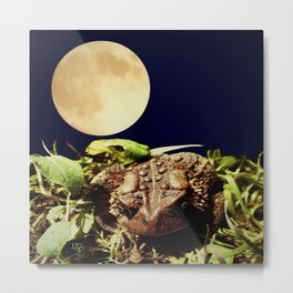 The Toad's Moon Metal Print
