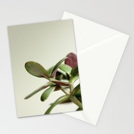JADE PLANT Stationery Cards
