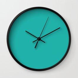 Light Sea Green - solid color Wall Clock