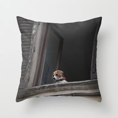 take me with you _ Beagle in a window Throw Pillow