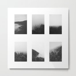 The Forests in Fog and Black and White Metal Print