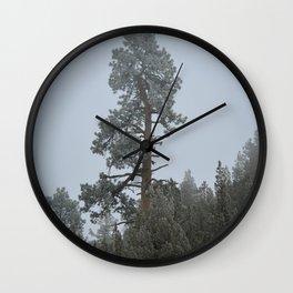 Ponderosa Pine In The Mist Wall Clock