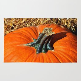 Pumpkin Stem Rug
