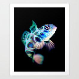 Mandarin Goby (Psychedelic Mandarinfish) Art Print