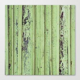 Rustic mint green grunge wood panels Canvas Print