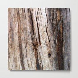 Shiver Me Timbers - 1 Metal Print