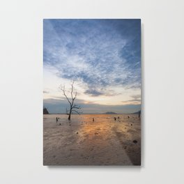 Lonely tree at muddy beach at sunset low tide Metal Print