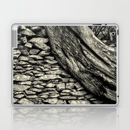 Twisted Tree Laptop & iPad Skin