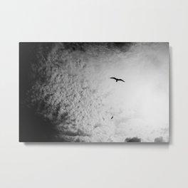 Black bird sky Metal Print