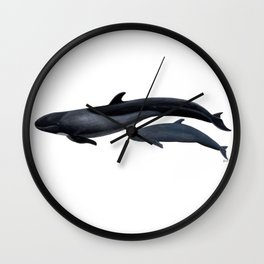 False killer whale Wall Clock