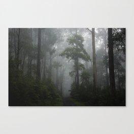 Foggy Forest 2 Canvas Print