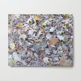 frosted medley Metal Print