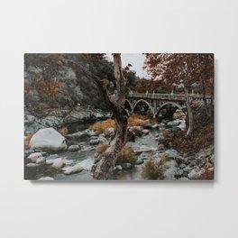 three rivers bridge Metal Print