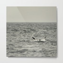 Whale of a Tale Metal Print