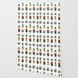 Festive Succulents Wallpaper