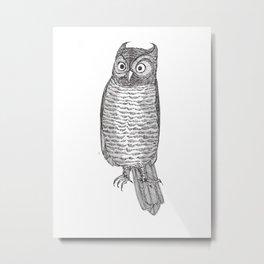 Indignant Screech Owl Metal Print