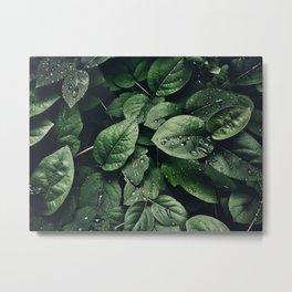 leaves close up #society6 #decor #buyart Metal Print