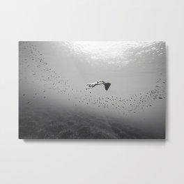 140907-2671 Metal Print