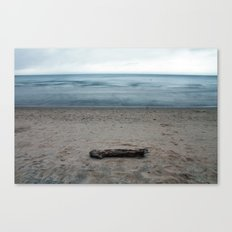 Michigan Driftwood Canvas Print