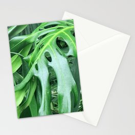 Madcap Marvelous Tropical Jungle Palm Leaves Stationery Cards