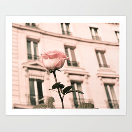 Paris in Blush Pink II Art Print