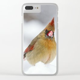 Female Cardinal in The Snow Clear iPhone Case