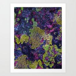 Purple Lichen   Artist: Nick Clements Art Print