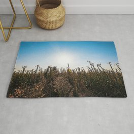 Fallow field in the Lomellina countryside at sunset full of yellow flowers Rug