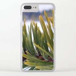 Pine branch and needles in Lapland Clear iPhone Case
