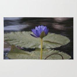 Longwood Gardens - Spring Series 47 Rug