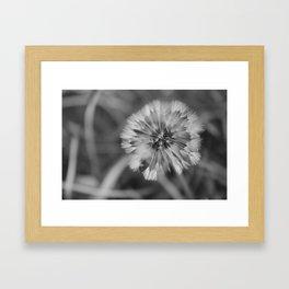 Dandy Framed Art Print