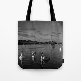 Summer evening swans Tote Bag