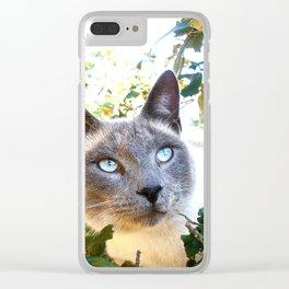 Siamese Cat in Tree Clear iPhone Case