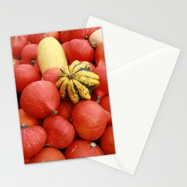 gourds 4 Stationery Cards