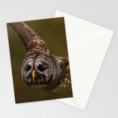Owl~ Stationery Cards
