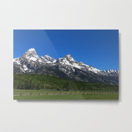 Fascinating Nature Metal Print