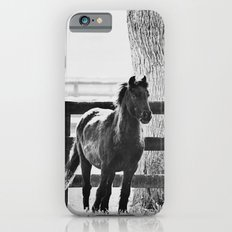 horse by the fence Slim Case iPhone 6s