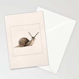 snail II Stationery Cards