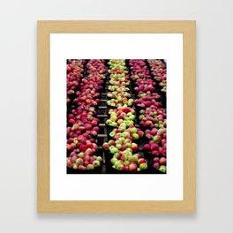 An abundance of apples Framed Art Print