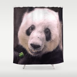 Giant Panda Bear Shower Curtain