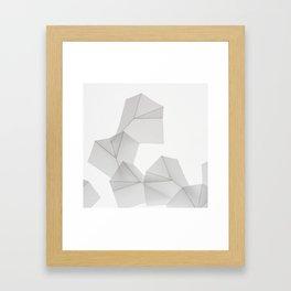After Blossfeldt Framed Art Print
