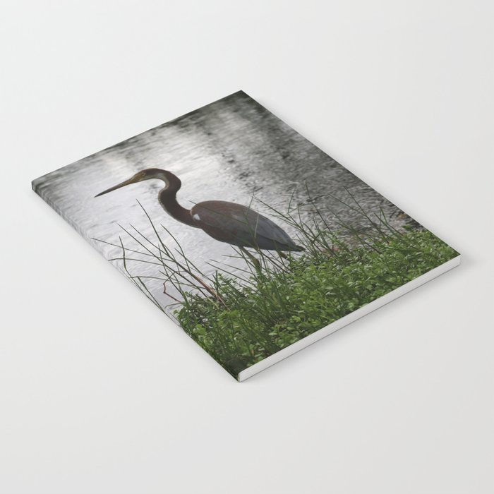 Wild Bird of Paradise Notebook