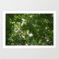 look up 04 Art Print