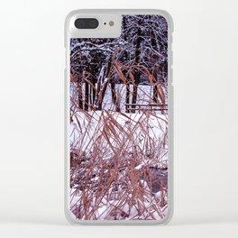 Nix in parco Clear iPhone Case