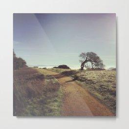 Tree Path of Life Metal Print