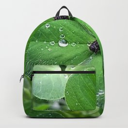Bug in the rain Backpack