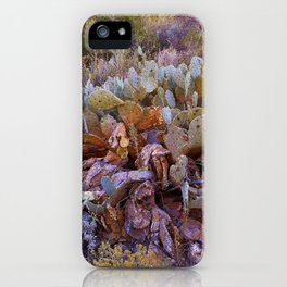 Lifecycle of Prickly Pear Cactuses iPhone Case