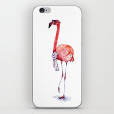 Fashionable  Pink Flamingo iPhone & iPod Skin