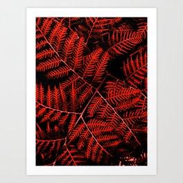 Flaming Bracken Art Print