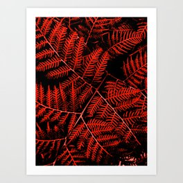 Flaming Bracken Art Print